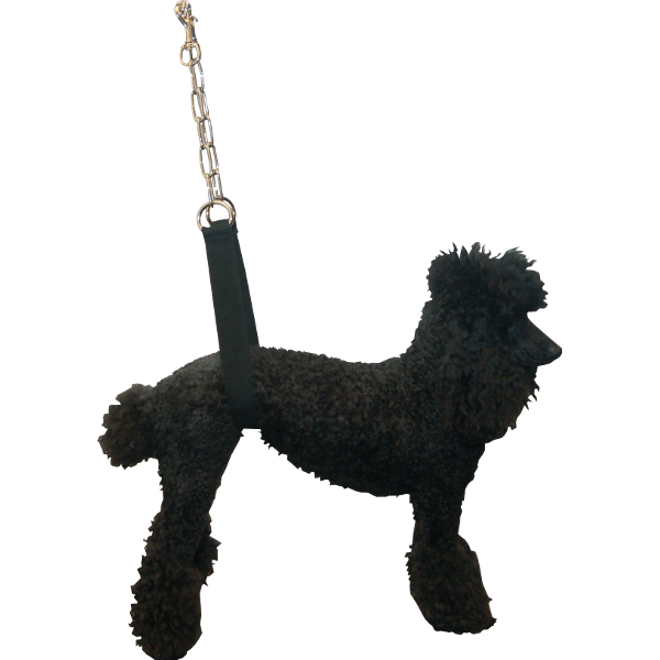 How To Use Belly Straps For Dog Grooming